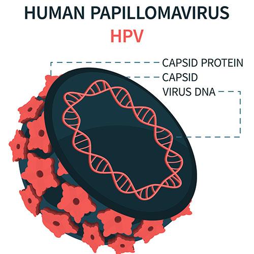 human-papilloma-virus-symptoms-causes